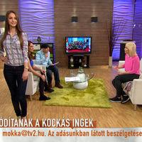 Vajna TV2-jében a kockás inges tiltakozás helyett a lumberszexualitás volt a téma