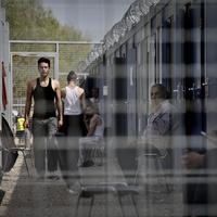 Gyerekek rácsok mögött a határon