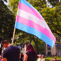 Kategóriákba zárva – transznemű emberek Magyarországon