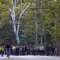 Így hazudik a Városliget kormánybiztosa az állampolgárok tiltakozásáról