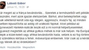 Vajon a chemtrail-hívő, antiszemita, homofób képviselő már lenyesendő vadhajtás Vona Gábornak?