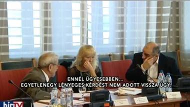 KDNP-képviselő: Áder János ügyesen szolgálja a Fidesz érdekeit