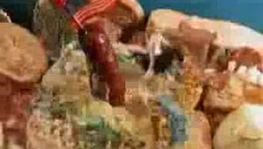Bee Gees metál a Gödörben