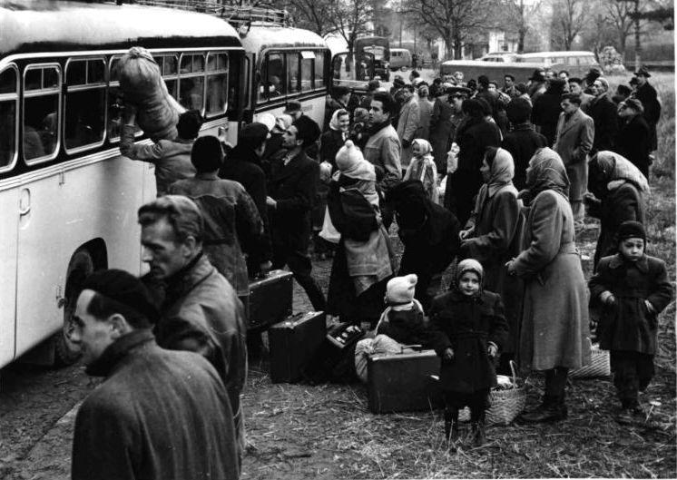 magyar_menekultek_1956.jpg