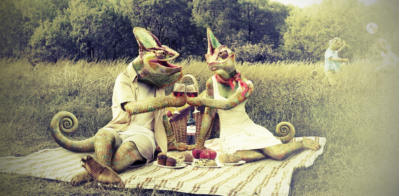 kameleon-par-piknik.jpg