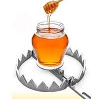 Honeytoken – avagy kövesd a hekkert!