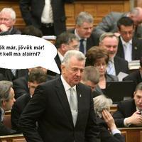 Palibá' is megérkezett a Parlamentbe...