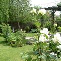 A tisztaság kertje - fehér 3.