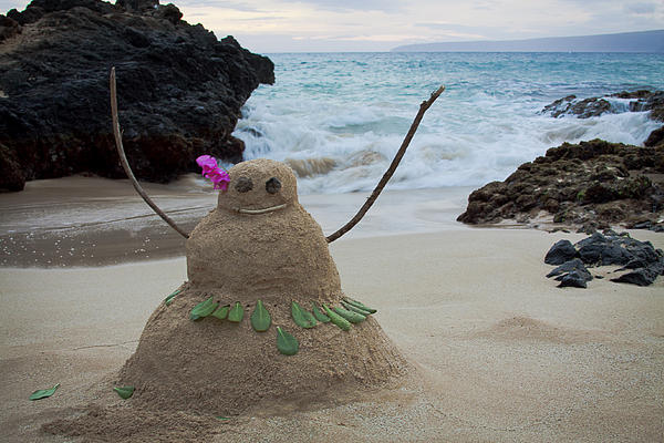 mele-kalikimaka-merry-christmas-from-paako-beach-maui-hawaii-sharon-mau.jpg