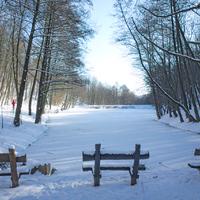 Égervölgyi hó, 2015