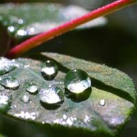 Eső után