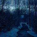 Kék hajnal