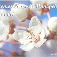 Húsvéti képeslapnak