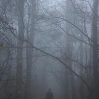 Ködös Mecsek