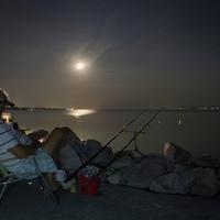 Horgász a...