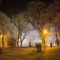 Fehér park