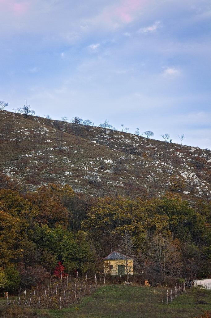 Kis ház a hegy alatt - arra a hegyre kellett felmászni :D