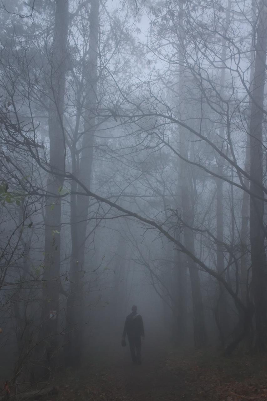ködös kilátás