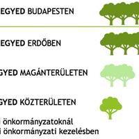 Fakataszter-favédelem-tájékoztatás – nagyon hiányzik Ferencvárosból