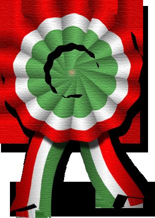 kokarda2.png