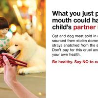 Mondj nemet a kutya- és macskahús evésre!