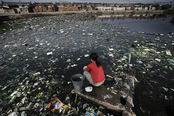 20091020luguang06-polluted-chinese-pond.jpg