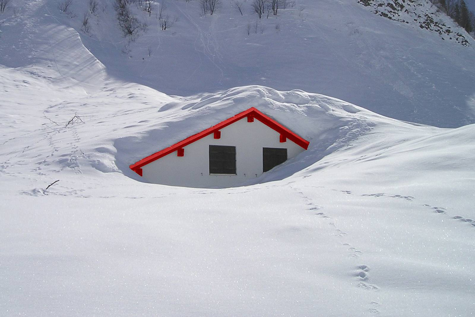 snow-removal-roof-buried-standard_ee74a28a036f83e1aae8d5d7ee01e40f.jpg