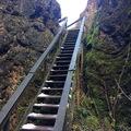 Úrkúti őskarszt - Csárda-hegyi tanösvény