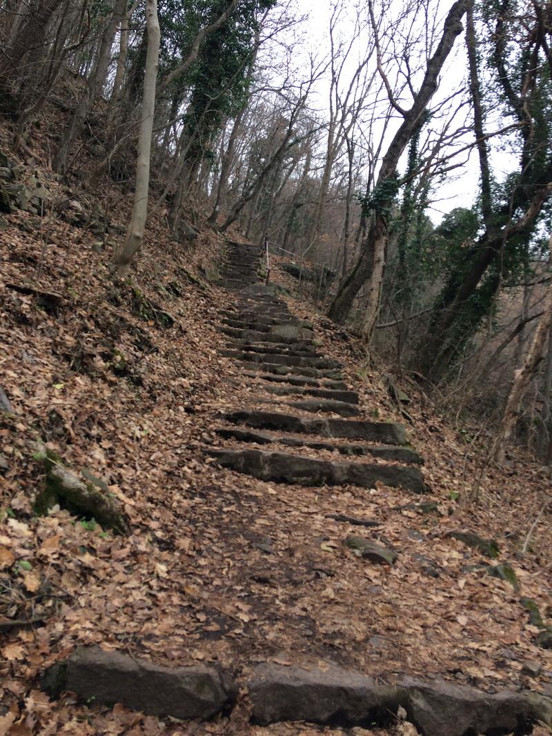 Bazalt lépcsősor