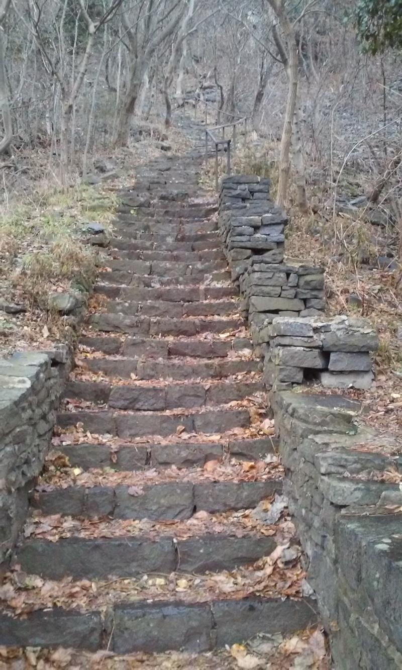Lépcsősorok