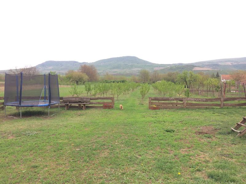 A kert végében gyümölcsös és patak - a gyerekeknek (és sportos felnőtteknek) trambulin