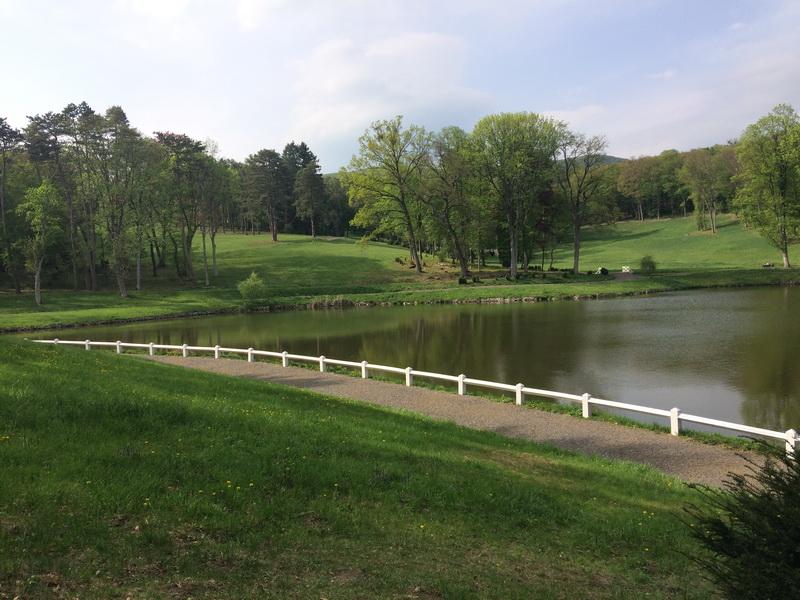 Sétaút a tó mellett