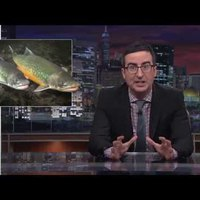 Last Week Tonight with John Oliver-videó