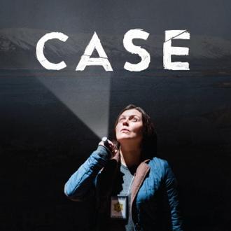 case-final.jpg