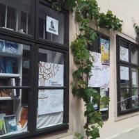 25 éves Sopron híres könyvesboltja: a Cédrus