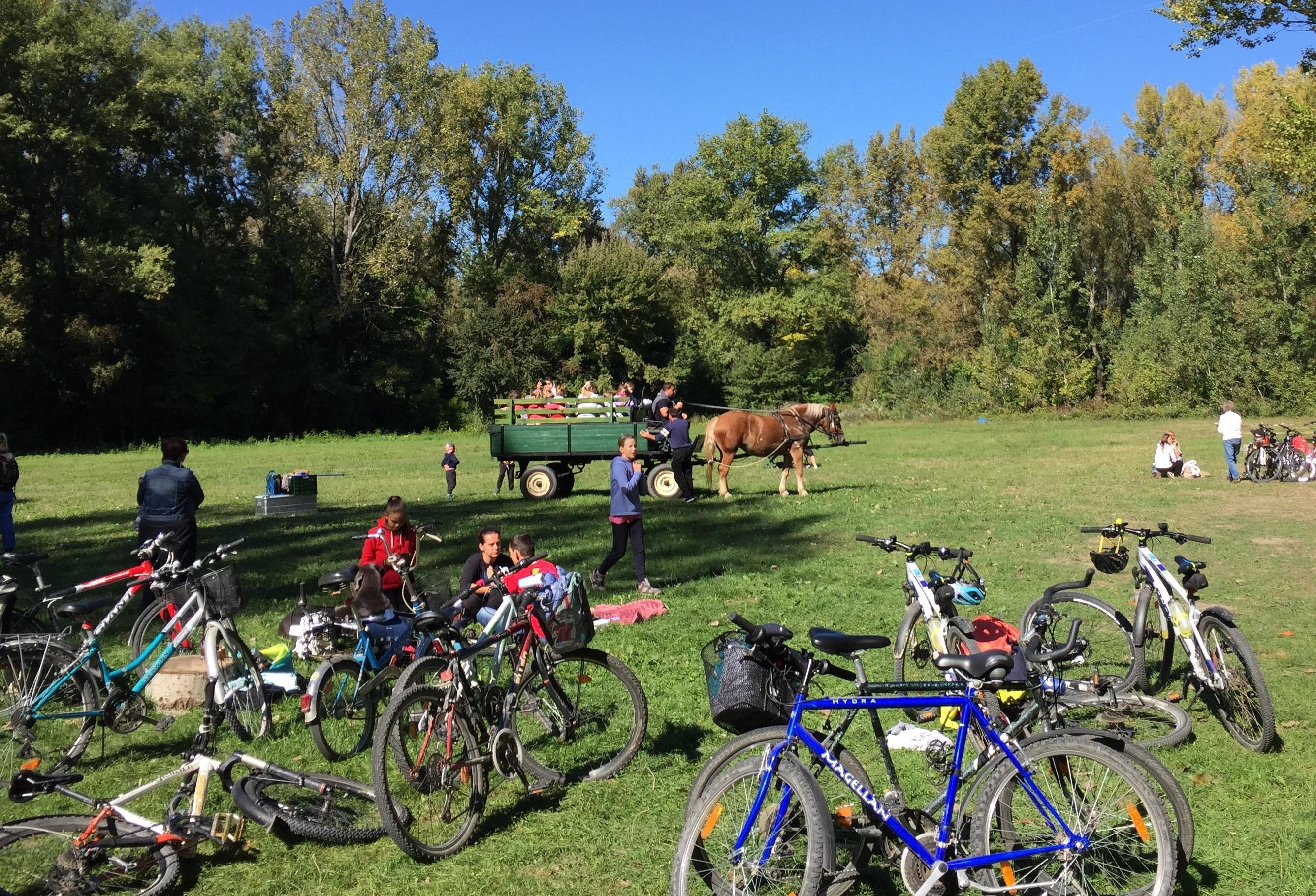 Pálinkatúra Kisorosziban kerékpárral, vagy gyalogosan (outdoor)
