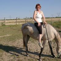 mennyi idő alatt tanul meg az ember lóul?
