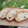 CH csökkentett kenyér