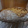 Steiner kenyér
