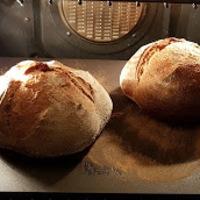 Kísérleti kenyér