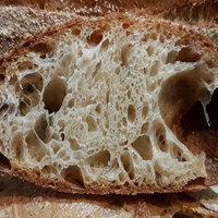 Durumlisztes kenyér gyümölcsvizes kovásszal