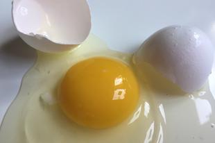 Ne dobd ki a tojásfehérjét!