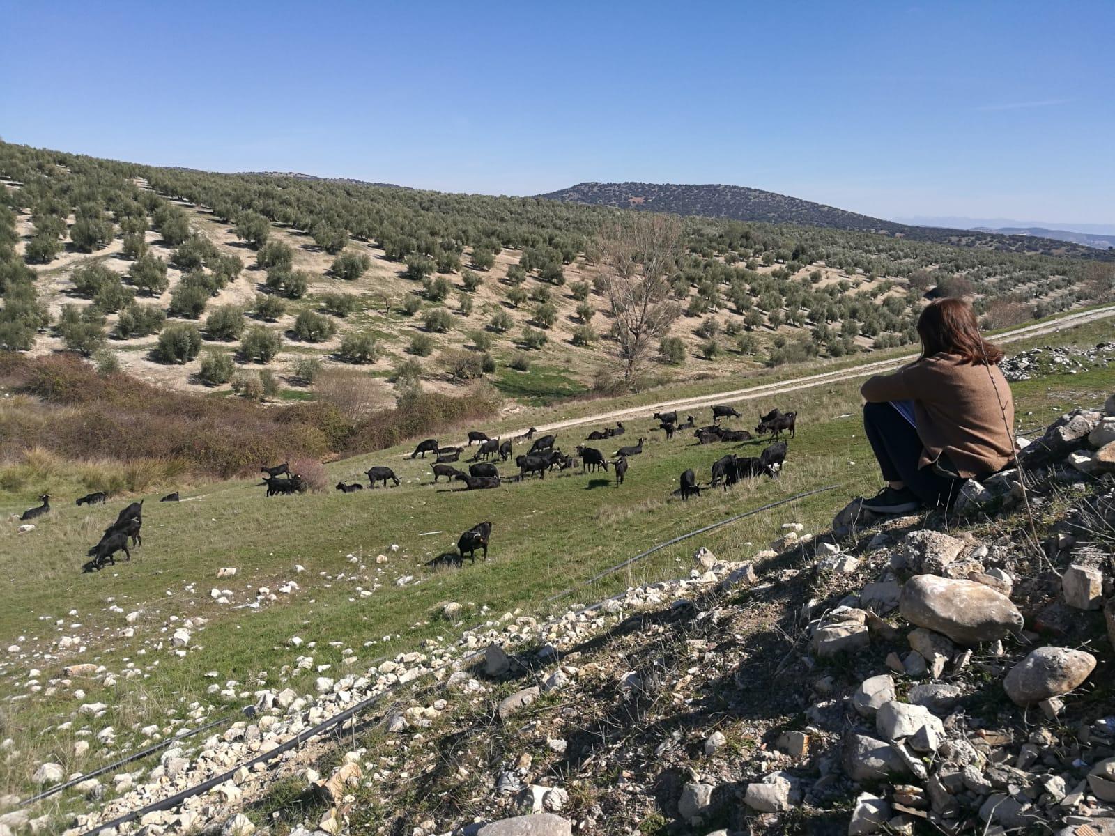 Karanténban Spanyolországban, avagy Covidám trashreality