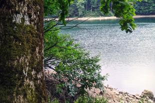 Nemzeti Parki Kalandok: Biogradska Gora #Montenegró
