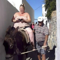 Eltiltják az elhízott turistákat a szamaraktól