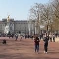 Be lehet költözni a Buckingham-palotába