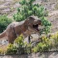 2,5 milliárd T-Rex élhetett a Földön