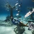Fantasztikus víz alatti múzeum