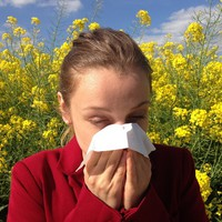 Miért van egyre több allergiás?