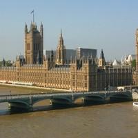 Patkányok a Parlamentben